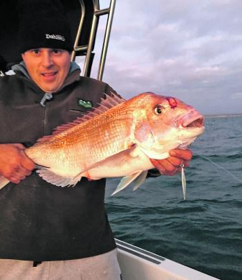 Linton Grant with a nice snapper caught on a micro-jig offshore from McLoughlins Beach. The boys bagged out on snapper for the day in a red-hot session, all using micro-jigs.