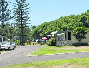 There are trees on 3 sides of the Park. Note the leafy border behind the office and kiosk.