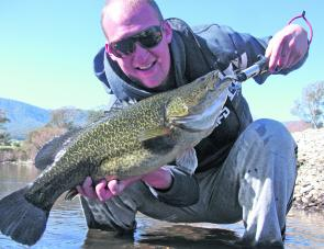 Brenton Richardson with a beautiful clear water Murray cod from the Kiewa River. Brenton caught this fish in the freezing cold water of the Kiewa River in the middle of May on a Mudguts spinnerbait.