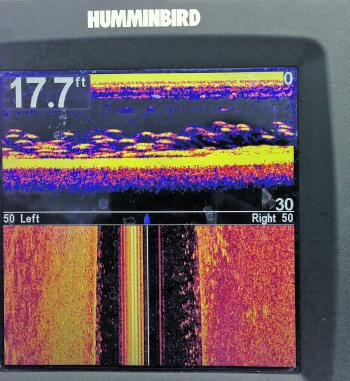 Use your sounder to find schools in the deeper water.