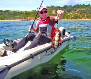 Some calm and sunny weekend days have meant productive squidding from kayaks and small boats around Mornington's inshore reefs.