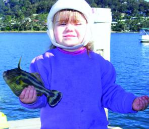 Anna Le Blang helps to rid Pittwater of the annoying but tasty leatherjackets.