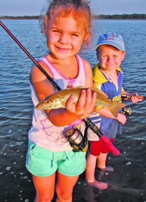 The sand flats are great locations to introduce kids to fishing. They are kid-friendly and can produce some tasty meals like this sand whiting.