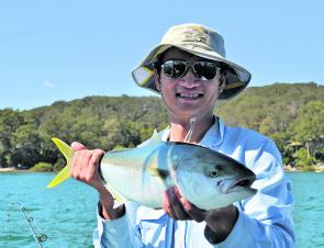 One of the many kingfish that can be encountered along Pittwater.
