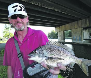 Les Morrow with a bream from Dynon Road Bridge.