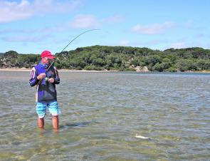 Wading the nipper flats at high tide is a relaxing and productive way to fish for bream. The water need not be deep.