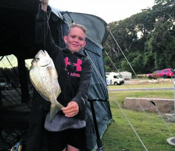 Bream like this are running on the beaches at the moment, with the best time being late in the afternoon. Fresh prawns and pipis are the best baits, but the bream will take pilchards and almost any fresh cut slab or cubed baits. You just need to find a go