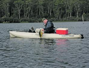 The thumb in the mouth is the trick way to land a reddie – easier than using nets from a kayak.