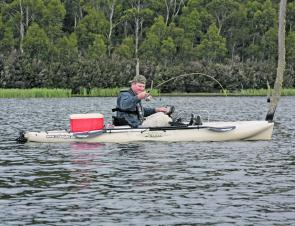 This one belted the lure right at the kayak – with quite clear water Mic watch the reddie sneak up and smash the plastic.