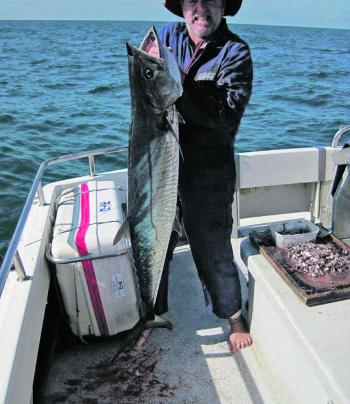 Spanish mackerel have been smashing the bait schools.