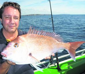 This is a solid sort of snapper for southern Sydney water.