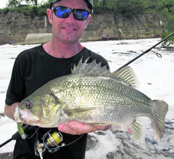 Mark Bargenquast with a chunky fresh bass.