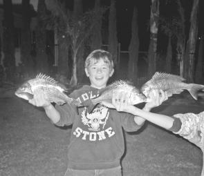 Doug Bauer caught these bream in the Patterson River.