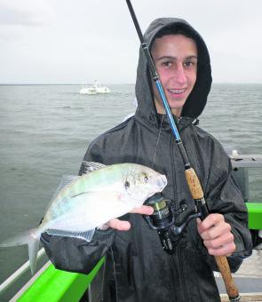 Trevally on blades or bait are great fun on light tackle.