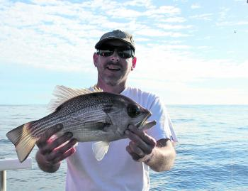 Winter pearlies are biting right across the Sunshine Coast reefs.