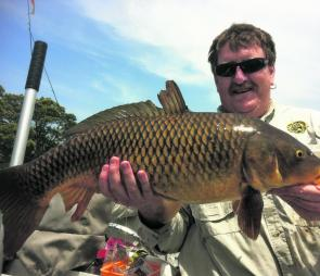 Bass by-catch, this 8kg carp went hard in Broughton Creek and ended up as offshore snapper bait.