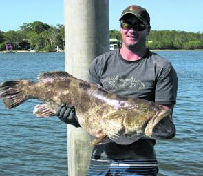 Beau Gralike from Eumundi managed to wrestle this 14kg gold spotted rock cod aboard on charter with Fishing Offshore Noosa.