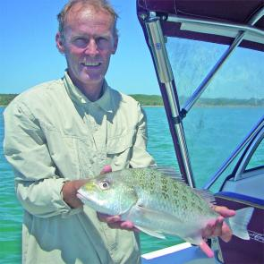 Paul was hit by this grunter while fishing the waters of Cape Capricorn.