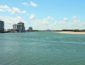 The Maroochy River should not be overlooked. It can produce great catches for the angler, especially when the beach is out because of big seas.