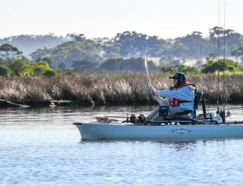 Reedy banks are plentiful and often account for some cracking East Gippy Bream!