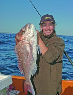 Kim cracks a big snapper on bait – first drop!