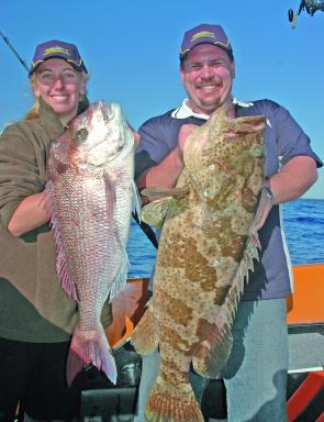 While Kym battled with the snapper, Kord slipped a livie over the side and boated this gold-spot cod. Two baits in the water and two fish on the deck – these boys were producing the goods!