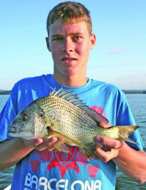 Quality yellowfin bream will be found in the lower sections of Merimbula Lake in December.