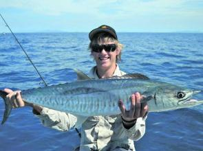 The blue water has been great with some great Spanish mackerel landed.