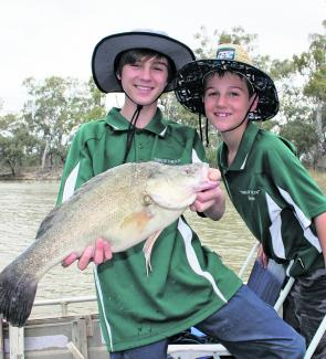 Mitchell Evans and Gavin Centofanti with a nice Murray River yellowbelly caught recently on shrimp and worms. Fish like this are quite typical for this time of year.