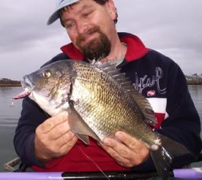 Another big bad bream horsed from the snags. 46cm and 4lbs