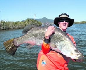 A heavyset 110cm+ barramundi caught from Peter Faust Dam.