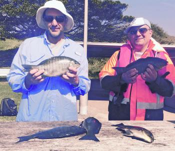 Peter Lopreiaco and Stephen Haddad with a good catch of luderick. These fish are great fun on a 3kg outfit, and the same gear suits bream and whiting fishing as well.
