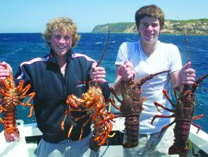 Jarron and Travis Cole show off their diving skills with a haul of respectable crayfish.
