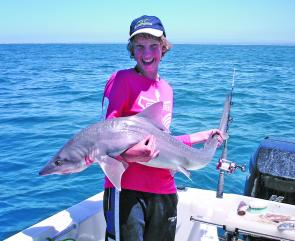 James Ollington shows off a big gummy shark of 10.45kg that he caught on a slimy mackerel head (photo: Terry Ollington).