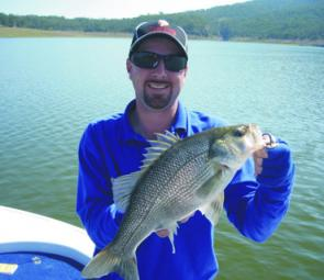 There have been plenty of bass to 50cm in Lake Moogerah. Reaction baits have been producing good results.