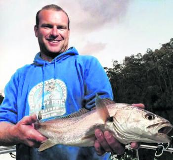 Dan Hoey of Salty Dog Charters with one of many of the school mulloway inhabiting the Glenelg River.