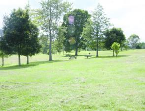 The grassy park area is great for a bit of relaxing after fishing sessions or for picnics.