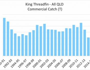 Statewide king threadfin catch rates from the last 25 years.