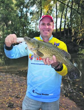 Peter Jung with a very nice King River Murray cod caught on a spinnerbait recently.