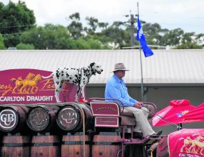 The crowd was delighted to see the Carlton Mid cart arrive on Sunday.