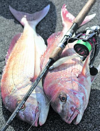 Snapper don't tend to be fussy when it comes to devouring a plastic but the more you can make it imitate a baitfish the more success you'll have.