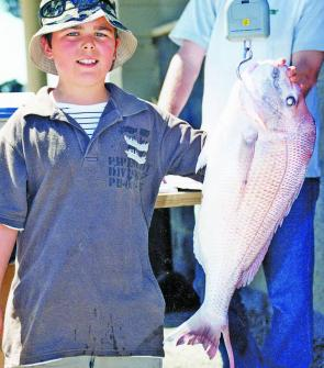 November is prime snapper time on the Bellarine.