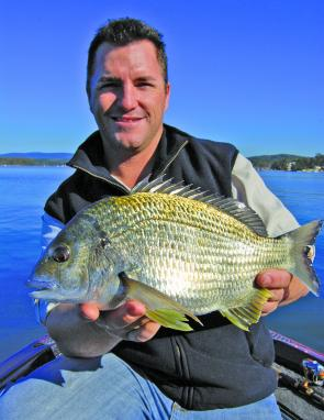 Stonker bream like this one hit hard on the surface and are a great catch.