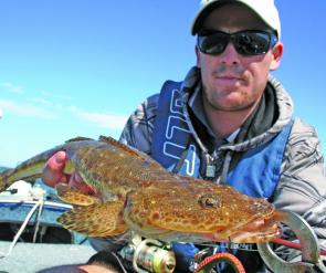 Flathead are a prime target in the warmer shallows and some hefty specimens are likely to show up this month.