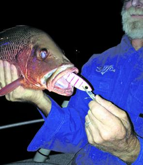 A jack caught on Twin River Lures 90mm Sard in bleeding mullet colour (#16).