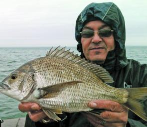 After realising there were fish feeding on berley that fell through the pier, John Regali soon set about landing what turned out to be a few bonus bay bream.