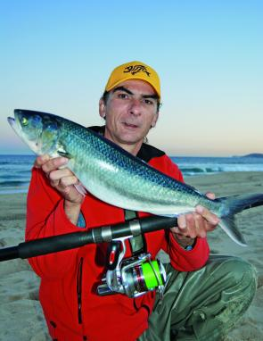 Salmon will still be around this month but a few tailor and bream may also start showing up along the beaches.