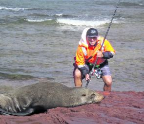 The author tries to chat up this seal at Long Reef. Don't get too close, a panicked seal can do some damage with its teeth. Best to just let them be.