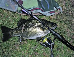 Bass are very active nocturnal feeders. Surface lures are not a necessity to get them though, especially in clear water.