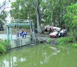 The carp cage is installed at Island Creek Weir, on the Lachlan – carp central.